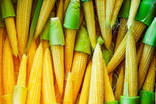 Mała dojrzała kukurydza lub kukurydza