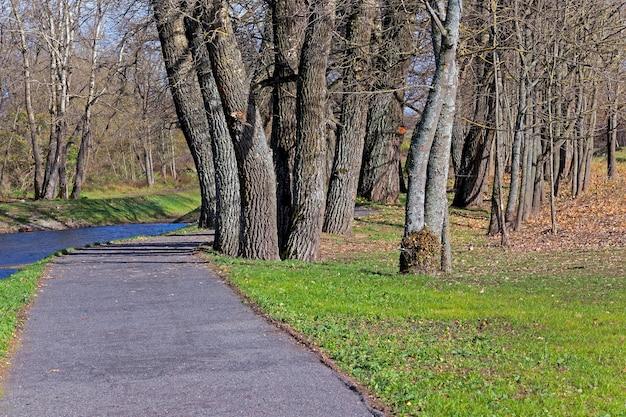 Mała droga asfaltowa, położona poza miejscowością