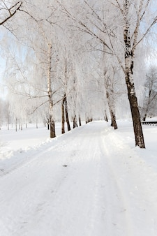 Mała droga w sezonie zimowym.