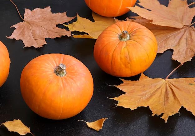 Mała dynia i żółte liście klonowe na ciemnym tle. koncepcja jesień. selektywne skupienie.