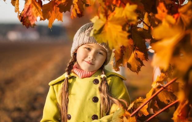 Mała dziewczynka 5 lat z jesiennych liści klonu