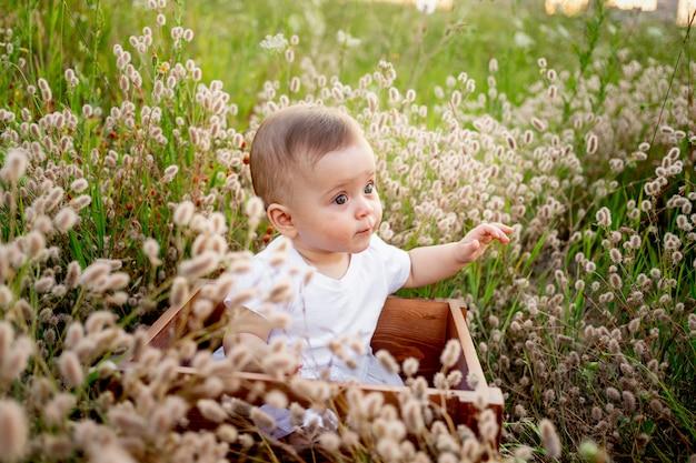 Mała dziewczynka 7 miesięcy siedzi wśród trawy w białej sukni, zdrowy spacer na świeżym powietrzu