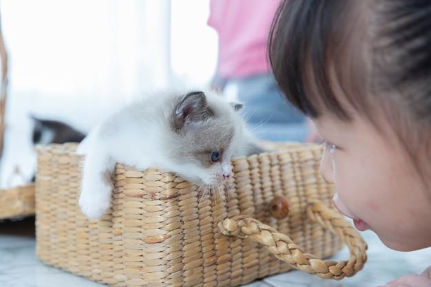 Mała dziewczynka bawić się gapić się przy okiem z kotem w domu, przyjaciela statku pojęcie.