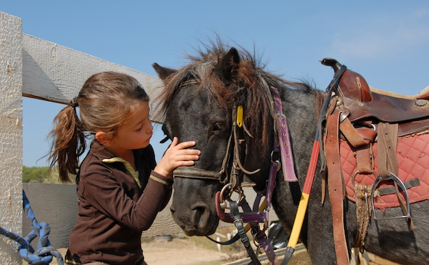 Mała dziewczynka i shetmand
