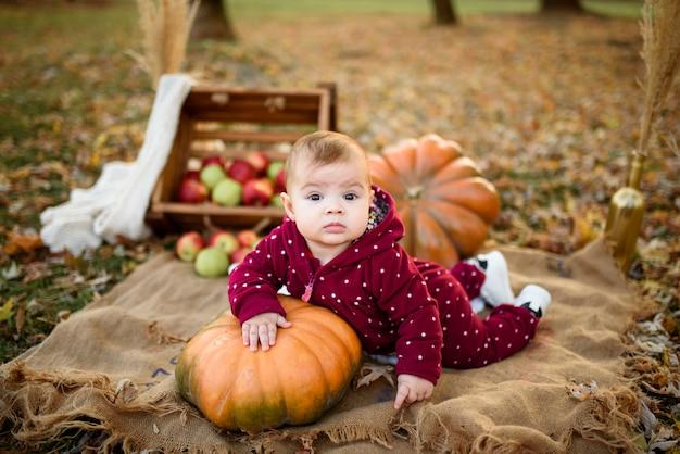 Mała dziewczynka opiera się na dyni.