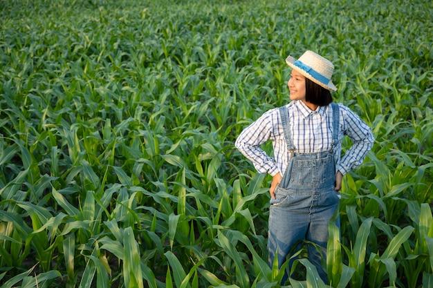 Mała dziewczynka relaksuje i widzii śledzenie produktu w kukurydzanym polu. produkty kukurydziane są wykorzystywane do produkcji żywności dla ludzi i zwierząt. koncepcja rolnictwa.