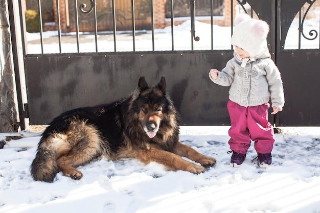 Mała dziewczynka rozmawia z psem na zimowym spacerze