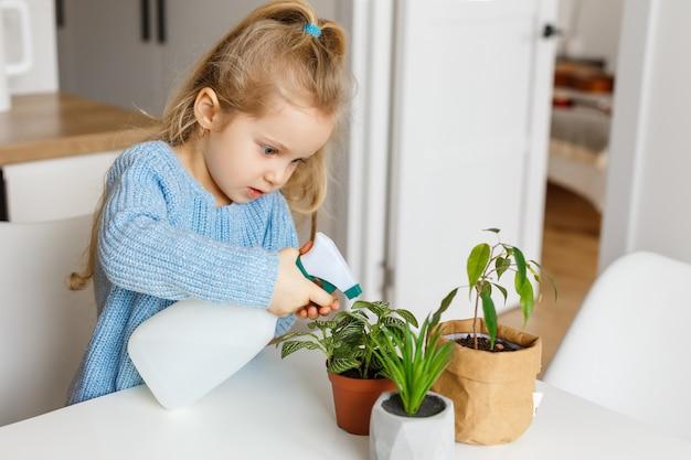 Mała dziewczynka rozpyla rośliny doniczkowe w domu. skoncentrowany 3-letni dzieciak wspomagający pielęgnację roślin