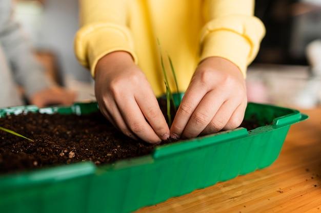 Mała dziewczynka sadzenie kiełków w domu