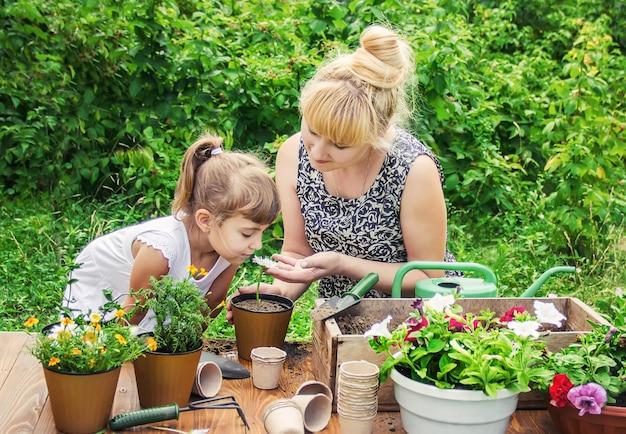 Mała dziewczynka sadzi kwiaty. młody ogrodnik. selektywna ostrość.