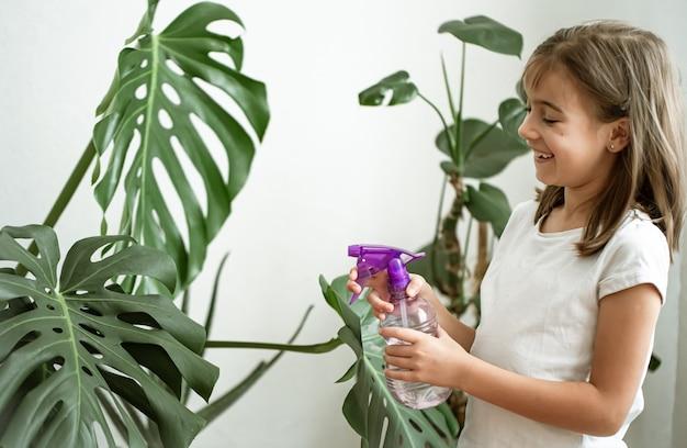 Mała dziewczynka spryskuje liście rośliny doniczkowej, opiekując się rośliną monstera.