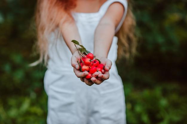 Mała dziewczynka trzyma czerwony głóg w ogrodzie