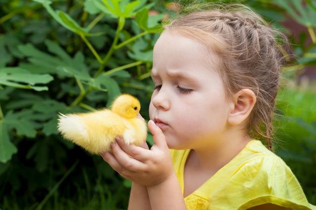 Mała dziewczynka trzyma kaczątko w dłoniach. natura. mały rolnik. słoneczny letni dzień