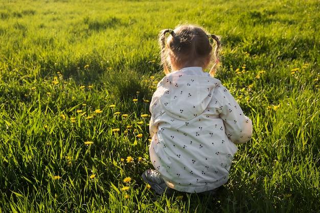 Mała dziewczynka w łąkowego zrywania żółtym dandelion kwitnie w pogodnym letnim dniu.