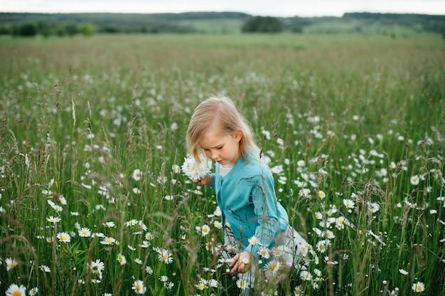 Mała dziewczynka w rumianku polu