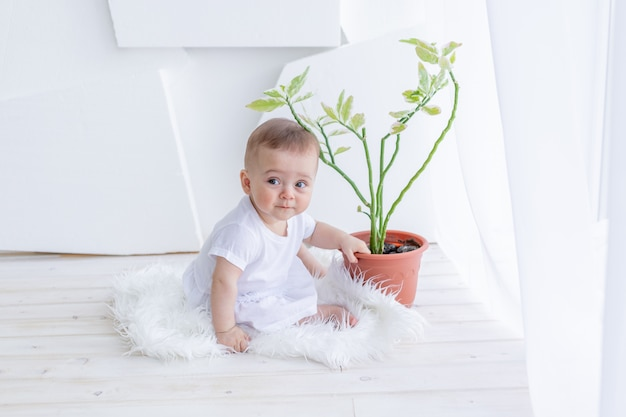 Mała dziewczynka w wieku 6 miesięcy siedzi w białych ubraniach w jasnym mieszkaniu przy oknie z kwiatem w pokoju
