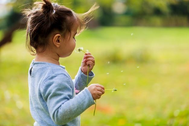 Mała dziewczynka z dandelion