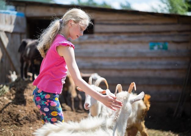 Mała dziewczynka z kózkami w gospodarstwie rolnym