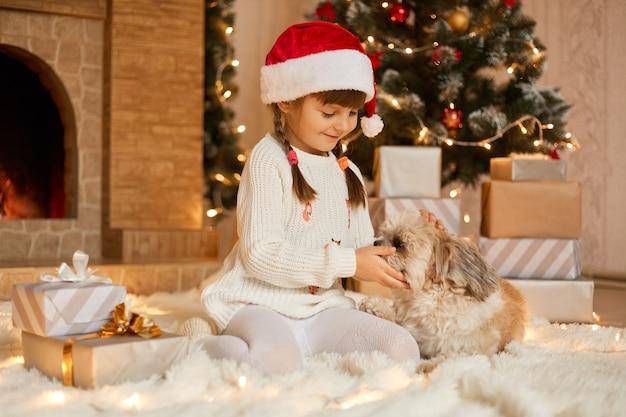 Mała dziewczynka z szczeniakiem siedzi na podłodze w pobliżu jodły, dziecko bawi się z psem pekińczykiem w świątecznym salonie, dzieciak ubrany w biały sweter i czapkę świętego mikołaja, urocza przedszkolak w wigilię bożego narodzenia.