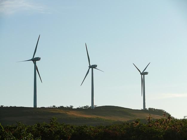 Mała farma wiatrowa