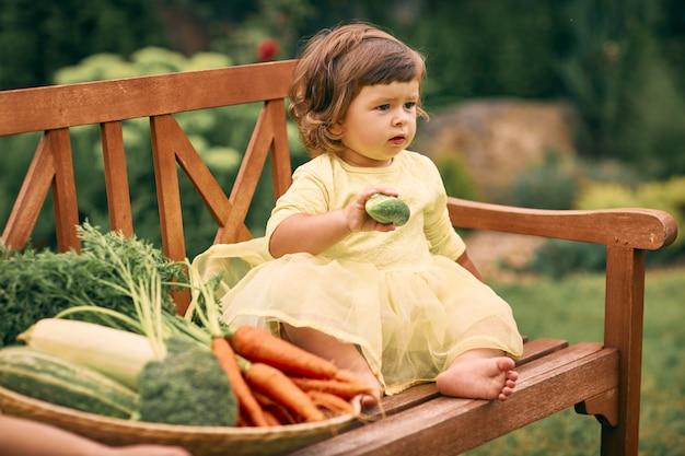 Mała kędzierzawa dziewczyna w żółtej sukience, w zielonym ogrodzie, trzyma w dłoni ogórek, siada na ławce obok dużego kosza z warzywami. zdrowe jedzenie, zielone wegetariańskie jedzenie.