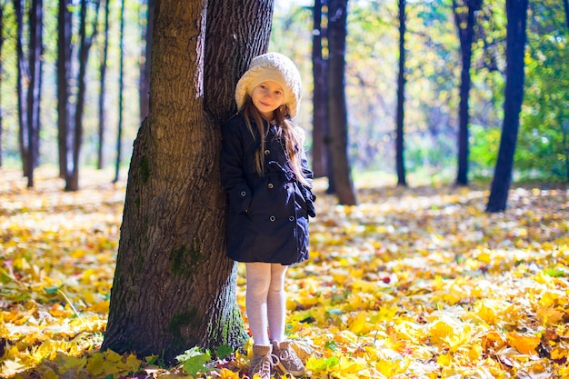 Mała piękna dziewczyna na jesieni łące w pogodnym spadku dniu