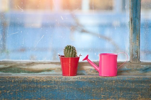 Mała różowa konewka i kaktus na starym oknie