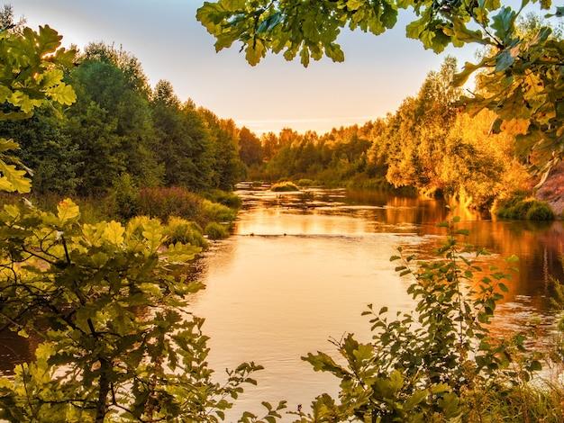 Mała rzeka las o zachodzie słońca jesienią.