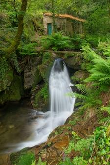 Mała rzeka we wspólnocie galicji