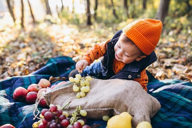Mała śliczna chłopiec z rodzicami na pinkinie w parku