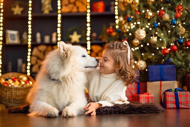 Mała śliczna dziewczyna z białym psem malamute w pobliżu choinki.