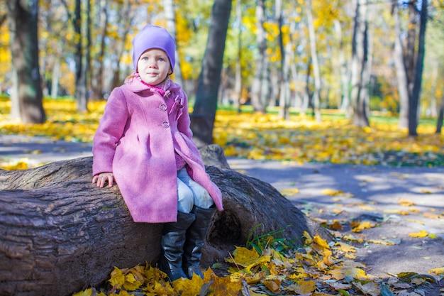 Mała szczęśliwa dziewczyna w jesień parku na słonecznym dniu