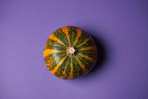 Mała textured odgórnego widoku bania na purpurowej ścianie. dekoracja na halloween.