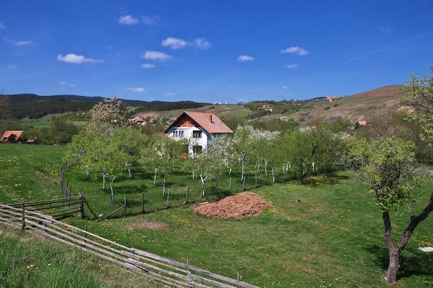 Mała wioska w serbii, na bałkanach