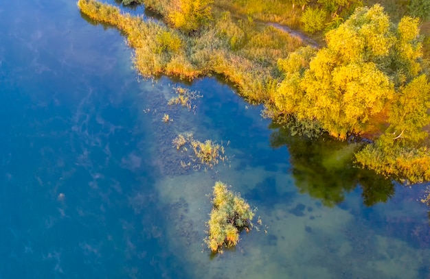 Mała wyspa na jeziorze z żółtymi jesiennymi drzewami.