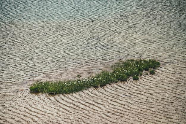 Mała zielona wysepka z trawą i kwiatami wśród spokojnej wody jeziora w złotym słońcu.
