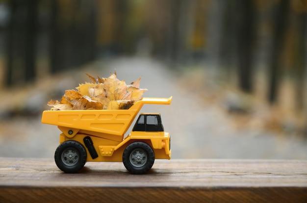 Mała żółta ciężarówka z zabawkami jest załadowana żółtymi opadłymi liśćmi.
