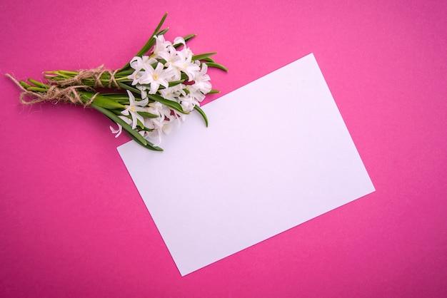 Małe białe kwiaty chionodoxa i kartka papieru na różowej powierzchni
