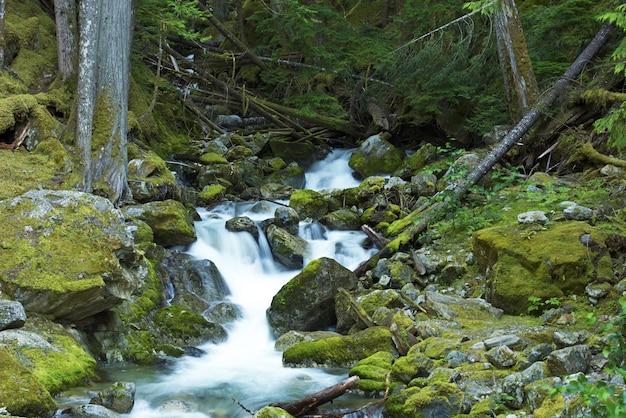 Małe creek wodospady
