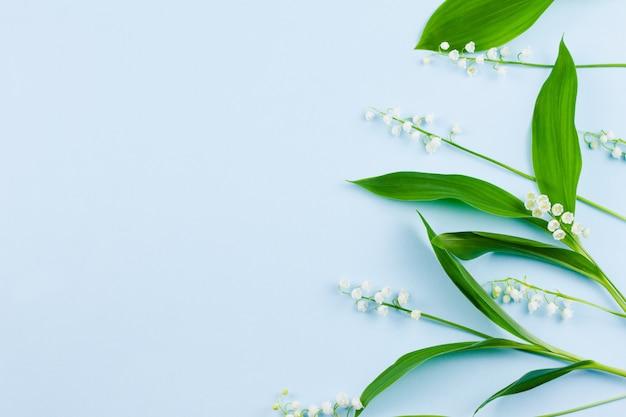 Małe, delikatne, kruche, świeże, białe kwiaty konwalii z zielonymi liśćmi leżą na pastelowym błękitu