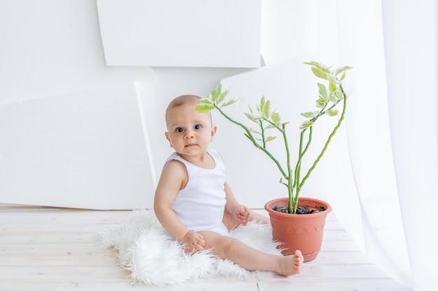 Małe dziecko, 8-miesięczny chłopiec, siedzi w białym ubraniu w jasnym mieszkaniu przy oknie z kwiatem w pokoju