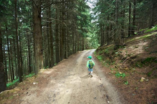 Małe dziecko chłopiec chodzi samotnie w jedlinowym lesie. widok z tyłu
