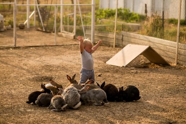 Małe dziecko pierwszy raz widzi króliki