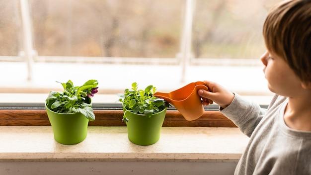Małe dziecko podlewa rośliny przy oknie