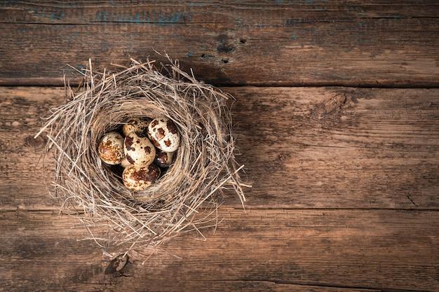 Małe gniazdo suchej trawy z jajami przepiórczymi wewnątrz na drewnianym tle. widok z góry z miejscem na kopię.