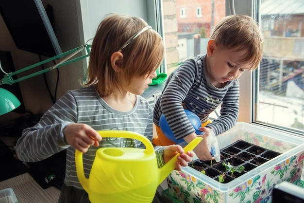 Małe kaukaskie dzieci podlewają sadzonki siedząc na parapecie, przygotowując sadzonki do sadzenia w szklarni