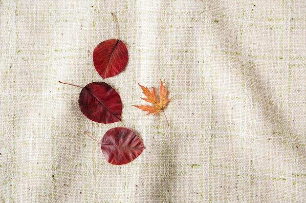 Małe kolorowe jesienne liście. leżał na płasko. tło obrus. minimalistyczny styl.