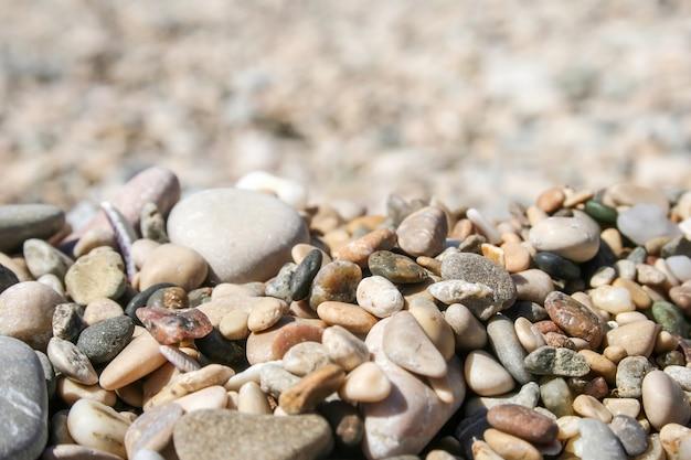 Małe kolorowe kamyki morskie i muszle na rozmytym tle