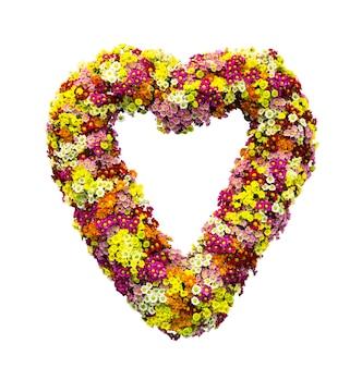 Małe kwiaty w kształcie serca na białym tle