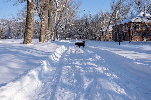 Małe miasto pokryte śniegiem. małe budynki i domy zimą z dużą ilością zasp śniegu na ulicy.